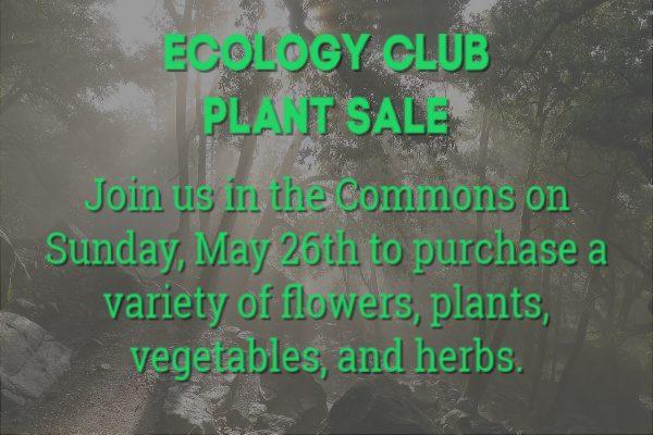 Ecology Club Plant Sale