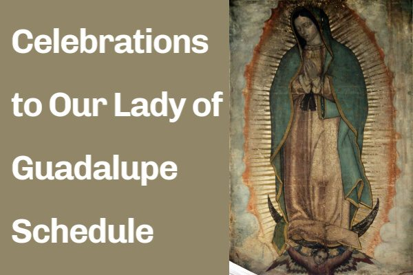 Celebrations to Our Lady of Guadalupe