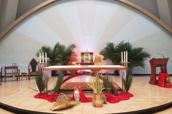 SMIP Sacramental Reopening Volunteer Form
